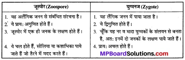 MP Board Class 12th Biology Solutions Chapter 1 जीवों में जनन 2
