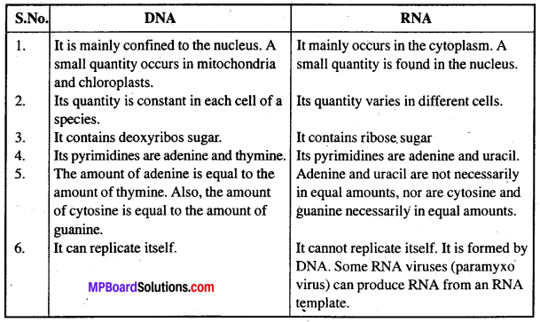 MP Board Class 12th Biology Solutions Chapter 11 Biotechnology Principles And Processes 5