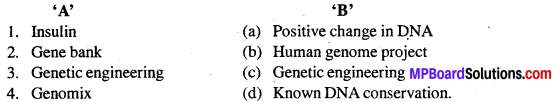 MP Board Class 12th Biology Solutions Chapter 11 Biotechnology Principles And Processes 6