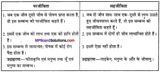 MP Board Class 12th Biology Solutions Chapter 13 जीव और समष्टियाँ 12