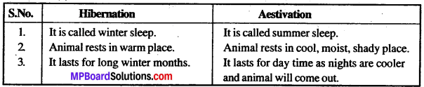 MP Board Class 12th Biology Solutions Chapter 13 Organisms And Population 1