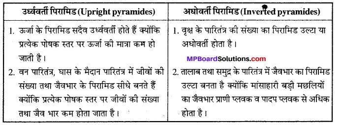 MP Board Class 12th Biology Solutions Chapter 14 पारितंत्र 4