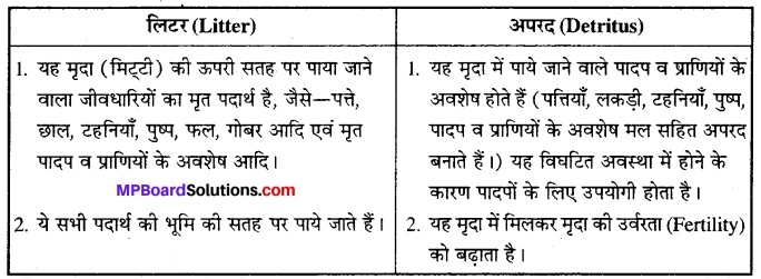 MP Board Class 12th Biology Solutions Chapter 14 पारितंत्र 6