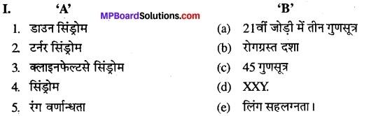 MP Board Class 12th Biology Solutions Chapter 5 वंशागति और विविधता के सिध्दांत 15