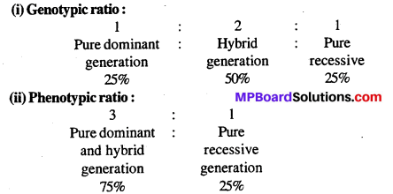MP Board Class 12th Biology Solutions Chapter 5 Principles of Inheritance and Variation 18
