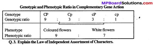 MP Board Class 12th Biology Solutions Chapter 5 Principles of Inheritance and Variation 24a
