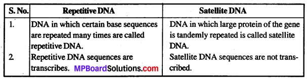 MP Board Class 12th Biology Solutions Chapter 6 Molecular Basis of Inheritance 2