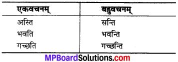 MP Board Class 6th Sanskrit Solutions Chapter 19 विज्ञानस्य आविष्काराः 2