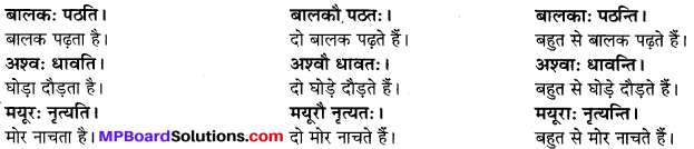 MP Board Class 6th Sanskrit Solutions Chapter 2 कर्त्तृक्रिर्त्तृयासम्बन्धः 3