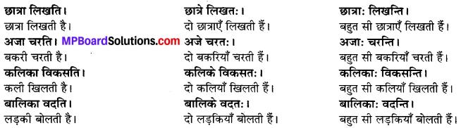 MP Board Class 6th Sanskrit Solutions Chapter 2 कर्त्तृक्रिर्त्तृयासम्बन्धः 6