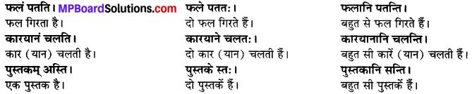 MP Board Class 6th Sanskrit Solutions Chapter 2 कर्त्तृक्रिर्त्तृयासम्बन्धः 7