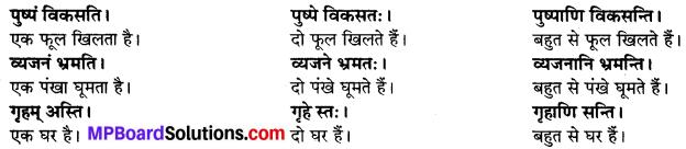 MP Board Class 6th Sanskrit Solutions Chapter 2 कर्त्तृक्रिर्त्तृयासम्बन्धः 8