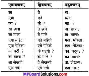 MP Board Class 6th Sanskrit Solutions Chapter 3 सर्वनामशब्दाः 10