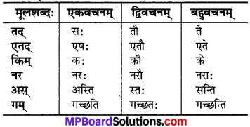 Mp Board Class 6 Sanskrit Chapter 3