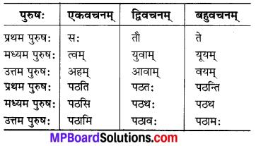 MP Board Class 6th Sanskrit Solutions Chapter 3 सर्वनामशब्दाः 26