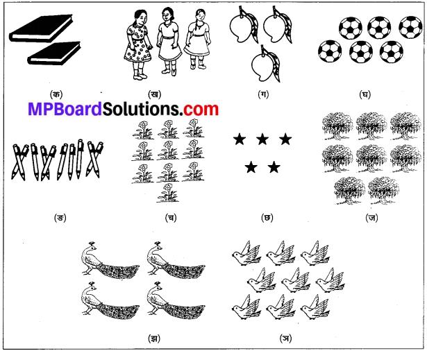 MP Board Class 6th Sanskrit Solutions Chapter 4 सङ्ख्याबोधः 1