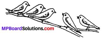 MP Board Class 6th Sanskrit Solutions Chapter 4 सङ्ख्याबोधः 16