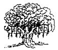 MP Board Class 6th Sanskrit Solutions Chapter 4 सङ्ख्याबोधः 2