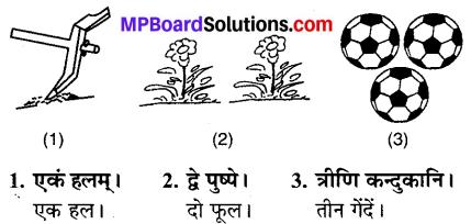 MP Board Class 6th Sanskrit Solutions Chapter 4 सङ्ख्याबोधः 22