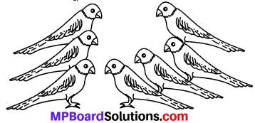 MP Board Class 6th Sanskrit Solutions Chapter 4 सङ्ख्याबोधः 8
