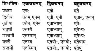 MP Board Class 7th Sanskrit व्याकरण-खण्डः img 10