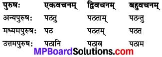 MP Board Class 7th Sanskrit व्याकरण-खण्डः img 17