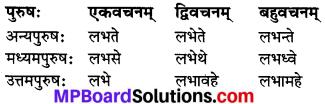 MP Board Class 7th Sanskrit व्याकरण-खण्डः img 21