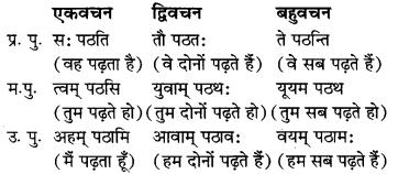 MP Board Class 7th Sanskrit व्याकरण-खण्डः img 32