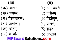MP Board Class 7th Sanskrit Solutions Chapter 7 भोपालनगरम् img 1