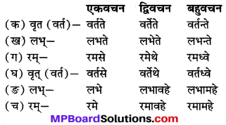 MP Board Class 7th Sanskrit Solutions Chapter 7 भोपालनगरम् img 2