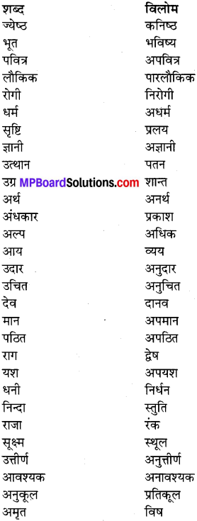 MP Board Class 7th Special Hindi व्याकरण 4