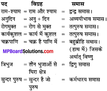 MP Board Class 7th Special Hindi व्याकरण 6