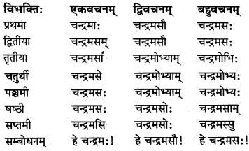 MP Board Class 8th Sanskrit व्याकरण-खण्डः 13
