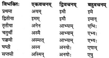 MP Board Class 8th Sanskrit व्याकरण-खण्डः 29