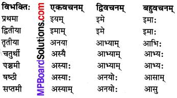 MP Board Class 8th Sanskrit व्याकरण-खण्डः 30