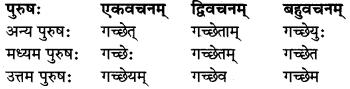 MP Board Class 8th Sanskrit व्याकरण-खण्डः 37
