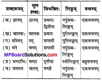 MP Board Class 8th Sanskrit Solutions विविधप्रश्नावलिः 1 Q10