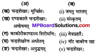 MP Board Class 8th Sanskrit Solutions Chapter 10 आजादचन्द्रशेखरः 1