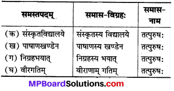 MP Board Class 8th Sanskrit Solutions Chapter 10 आजादचन्द्रशेखरः 2