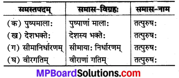 MP Board Class 8th Sanskrit Solutions Chapter 19 प्रियदर्शिनी इन्दिरा 1