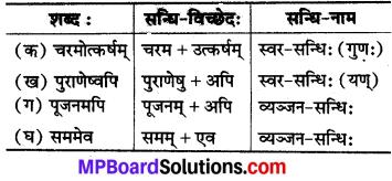 MP Board Class 8th Sanskrit Solutions Chapter 9 वसन्तोत्सवः 3