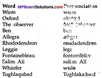 MP Board Class 9th English The Rainbow Solutions Chapter 15 How it all began 3
