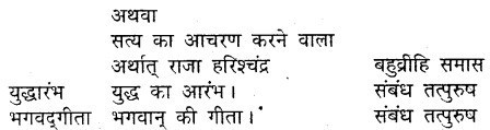 MP Board Class 9th Hindi Vasanti Solutions Chapter 21 कर्त्तव्य पालन img 4