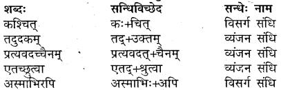 MP Board Class 9th Sanskrit Solutions Chapter 17 गुरुभक्तः आरुणि img-2