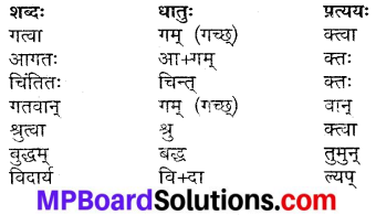 MP Board Class 9th Sanskrit Solutions Chapter 17 गुरुभक्तः आरुणि img-3