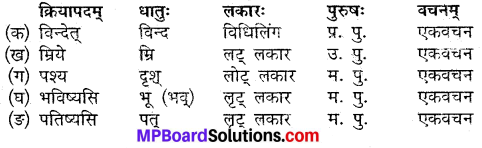 MP Board Class 9th Sanskrit Solutions Chapter 19 उपायैः सर्वं शक्यम् img-2