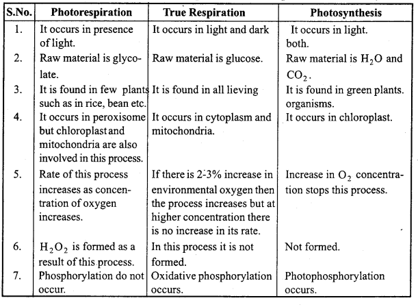 MP Board Class 11th Biology Important Questions Chapter 13 Photosynthesis in Higher Plants 15