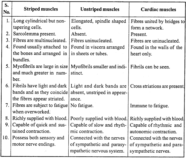 MP Board Class 11th Biology Important Questions Chapter 20 Locomotion and Movement 4