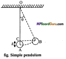 MP Board Class 11th Physics Important Questions Chapter 14 Oscillations 1