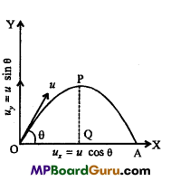 MP Board Class 11th Physics Important Questions Chapter 4 Motion in a Plane 18